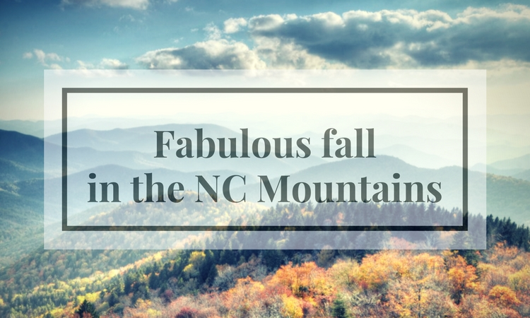 Fall foliage in North Carolina