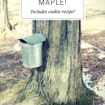 Forget pumpkin! Make mine maple! (cookie recipe)