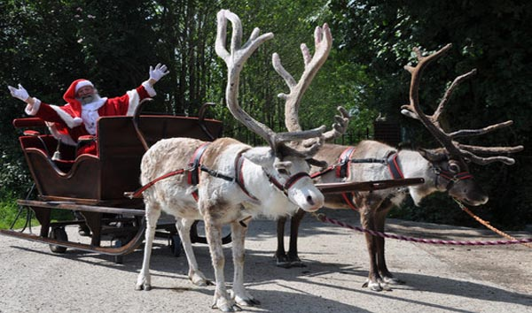 Best places to meet Santa in Kent