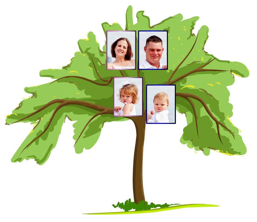 Familytreeforkids