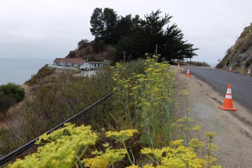 Highway 1 California costa