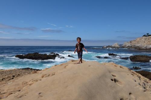 Andrew Molera state parco California