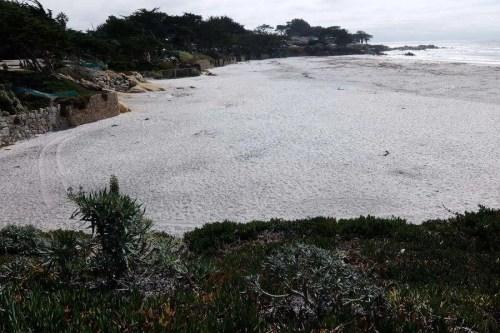 Carmel-by-the-Sea la spiaggia