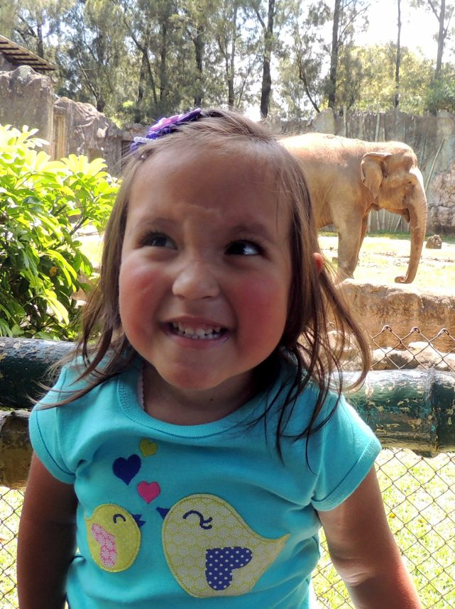 Niki y el elefante en el Zoo