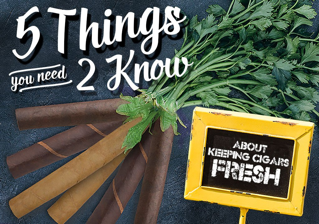 5 Things You Need To Know About… Keeping Cigars Fresh