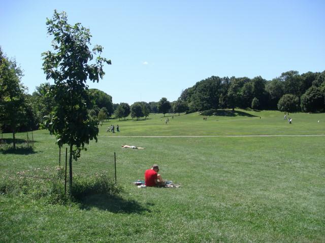 Long Meadow1