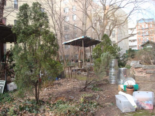 20080113-lower-east-side-ecology-center-garden-03.jpg