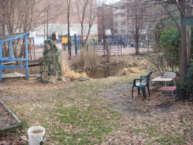 20080113-open-road-park-on-11th-and-ave-a-06-with-pond.jpg