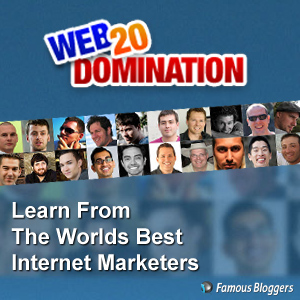 WEB DOMINATION 20 review