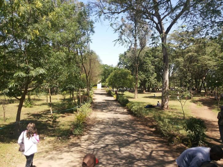 Nyayo Gardens Nakuru