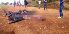 World in shock as gruesome photos, videos emerge from Cameroon