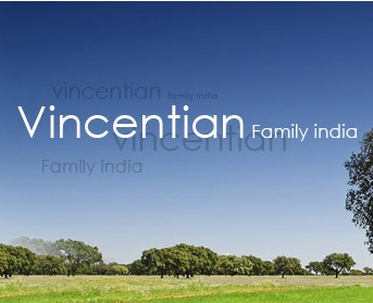 Vincentian Systemic Change – India