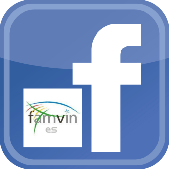 FamVin Facebook in Spanish Launches!