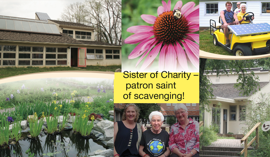 Sister of Charity – Patron saint of scavenging