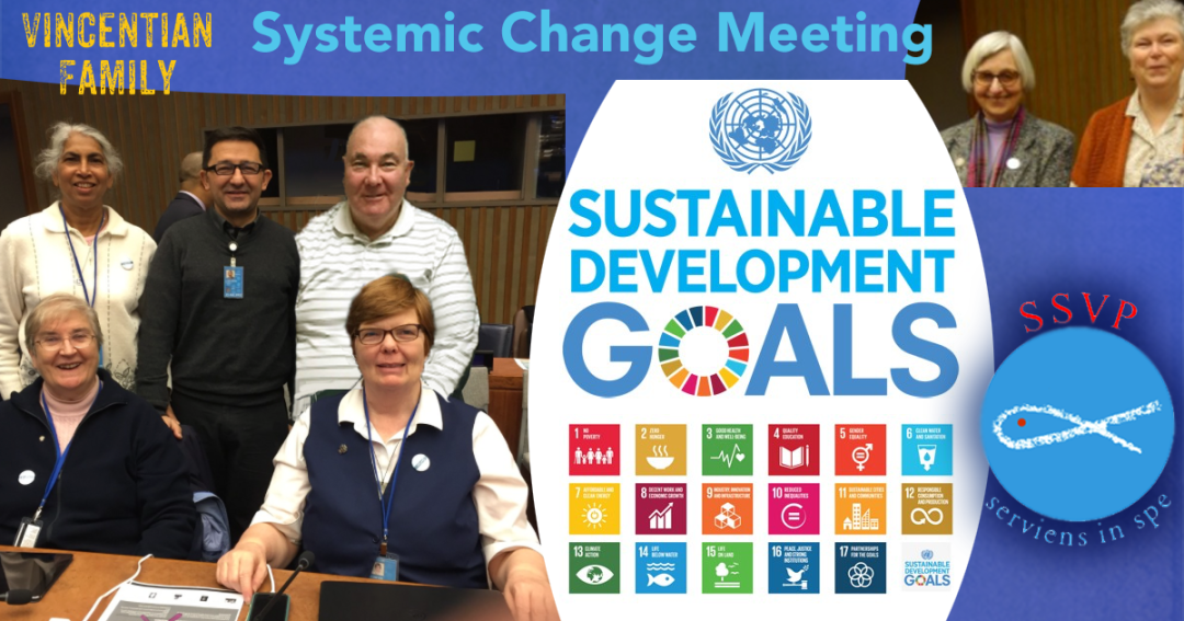 Systemic Change Meeting Includes UN NGO Reps