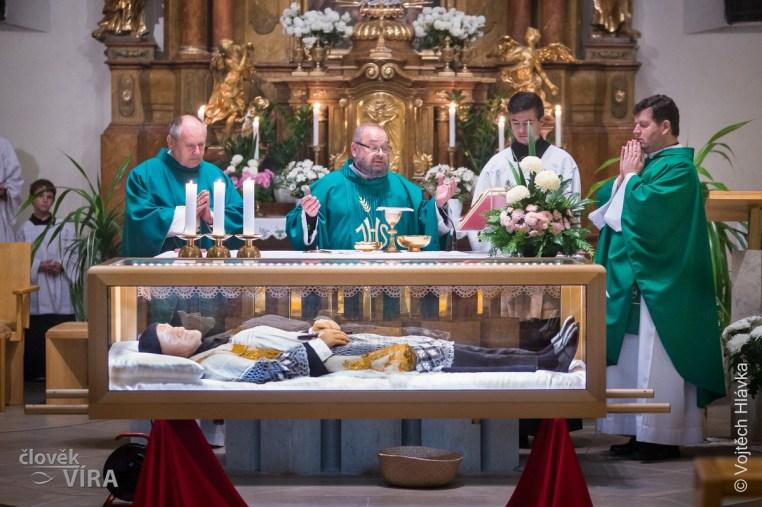 peregrination of st. vincent vol 3 08