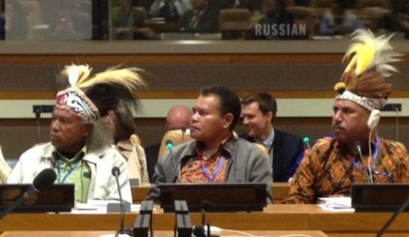 Los indígenas requieren medidas de desarrollo holístico