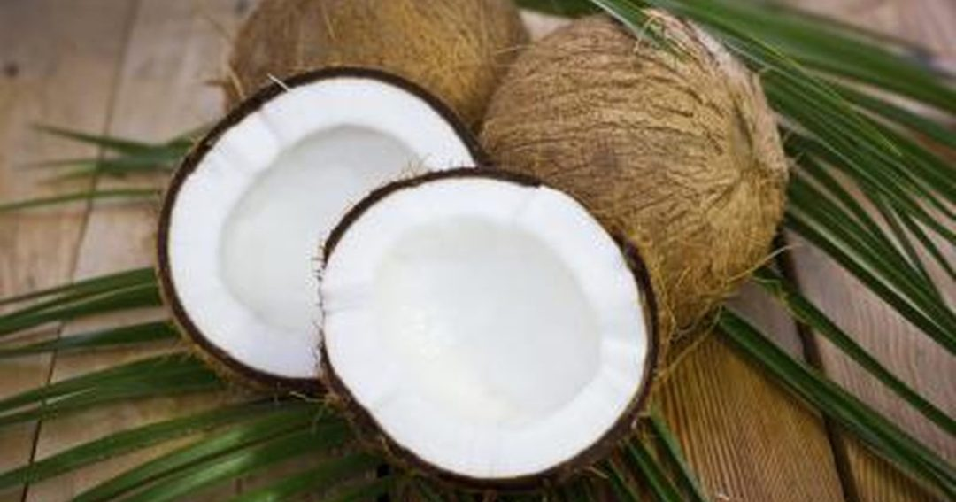 coconut fb