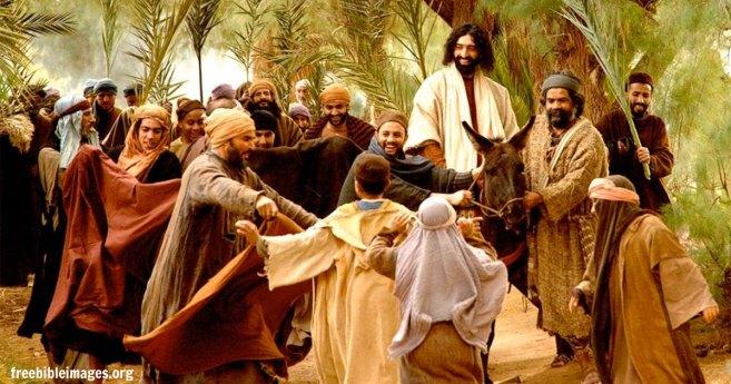 Los fariseos, ¿entendieron bien el significado de Cristo Rey?