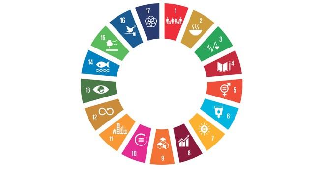 Objetivos de Desarrollo Sostenible, números 3 y 4