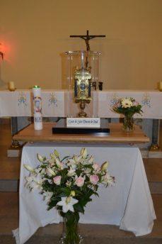 MOISSON D'AVRIL: Le Cœur de Saint Vincent de Paul à Vichy (1er et 2 avril 2017)