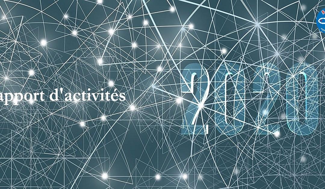 Rapport d'activités 2020 du Conseil Général de la SSVP