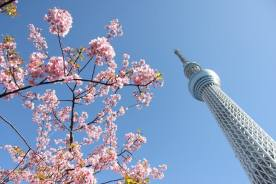 Skytree - Julie
