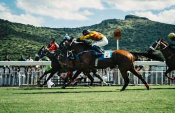 FanAppic - horse racing technology