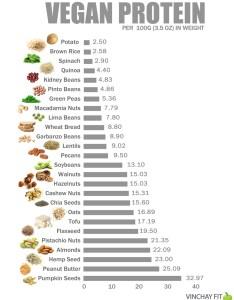 Fanatic cook also vegan protein chart rh fanaticcook