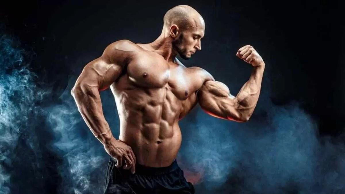 Insulina na musculação