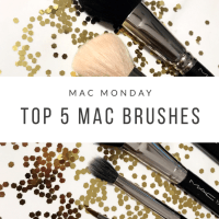 My Top 5 MAC Brushes