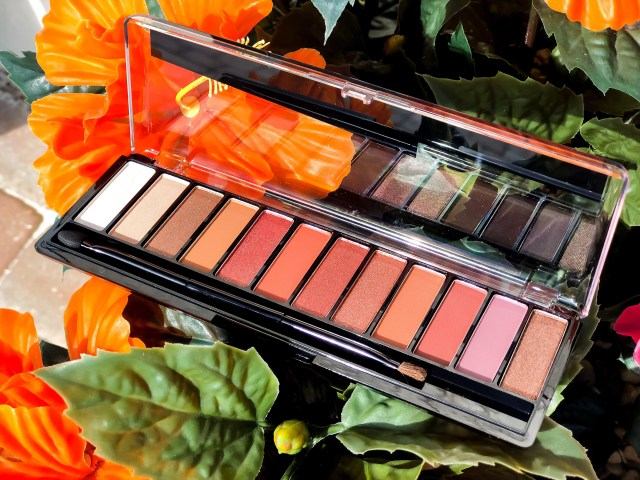 Rimmel Magnif'Eyes Spice Edition Review Swatches on Dark Skin