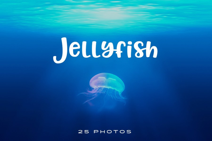 Jellyfish-Photo-pack