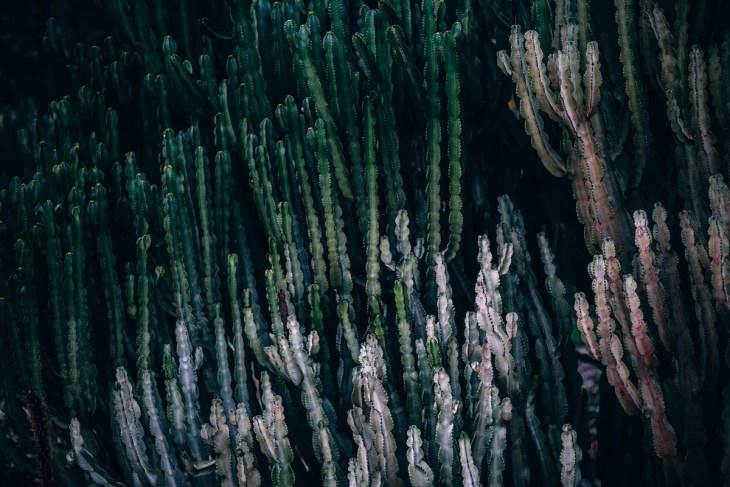 arizona-background-beautiful