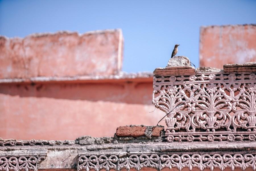 The rooftops of Pushkar, India.
