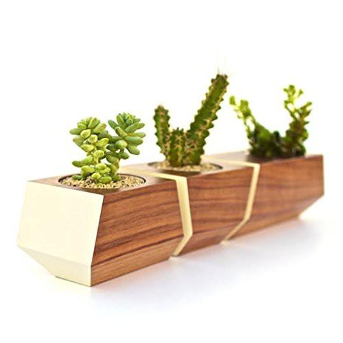 Boxcar-Planter-Set