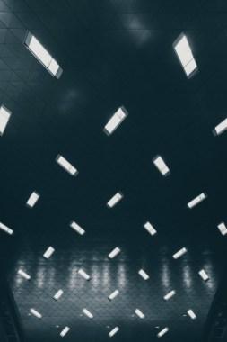 Lights-of-Purity