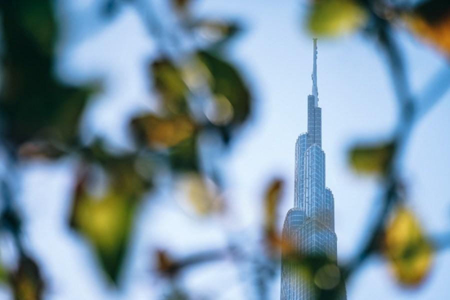 Burj-Khalifa-Photographed-Through-Leaves-and-Twigs