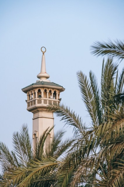 Government-Building-in-Dubai-Photographed-behind-Palm-Trees