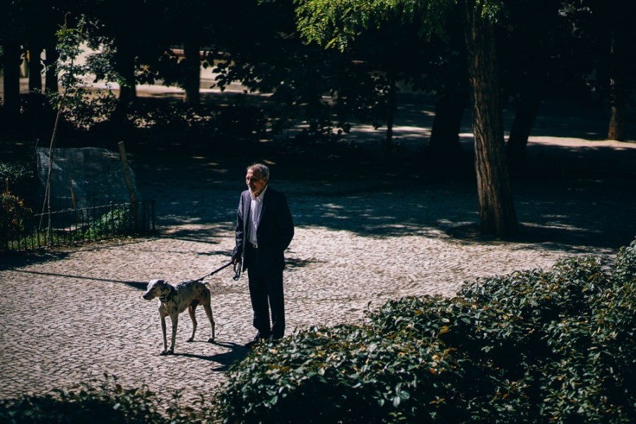 Old-Man-Walking-his-Dalmatian-Dog-in-the-Park