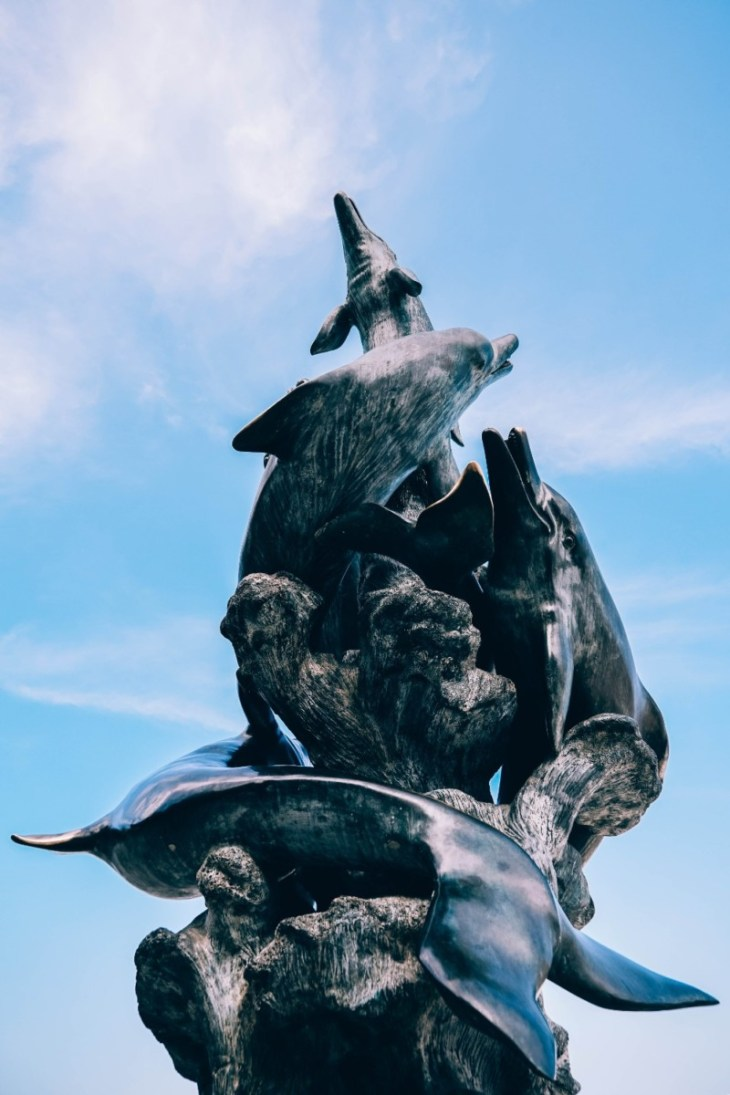 Close-up-Shot-of-a-Dolphins-Statue