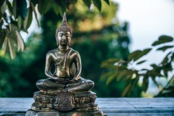 Small-Golden-Buddha-Statue-surrounded-by-Green-Leaves
