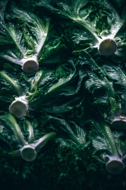 Close-up-Shot-of-Fresh-Organic-Lettuce
