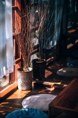 Dried-Flowers-in-a-Decorative-Vase-Placed-by-the-Window
