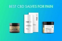 Best_CBD_Salves_for_Pain