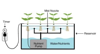 aeroponics hydroponics system