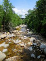 A little river that ran through Sawyer Pond trail.