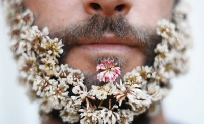 Hipsters con flores en la barba.