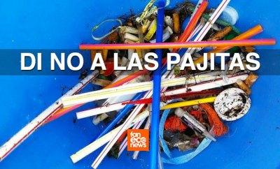 Pajitas de plástico.