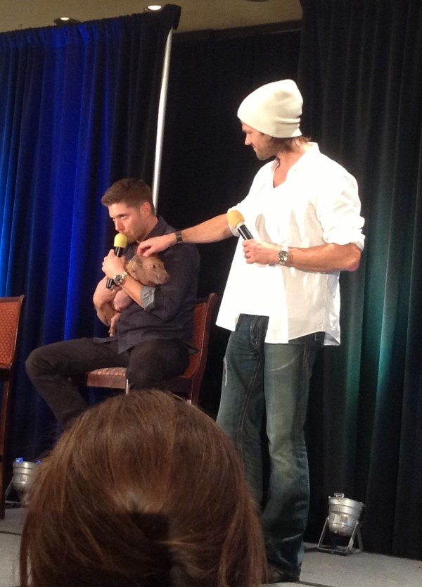 Jensen and Jared with IcarusSPNPig